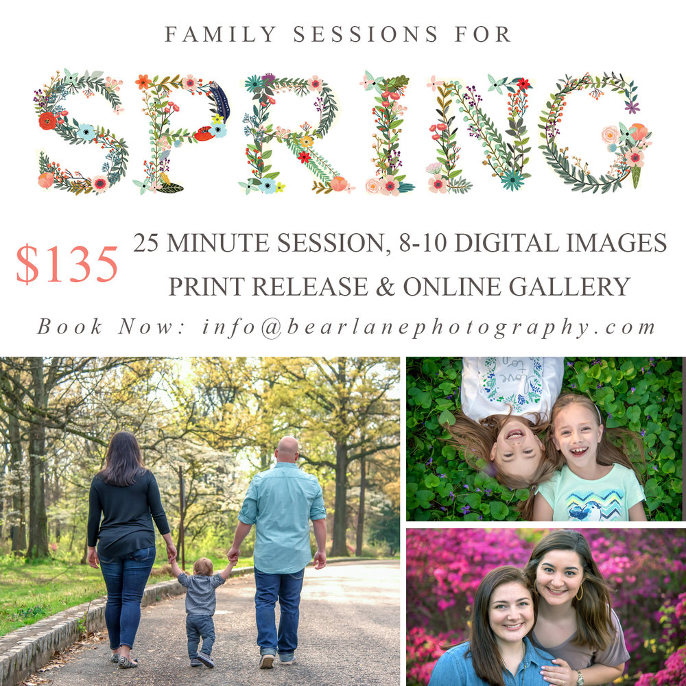 SpringFamilySessions