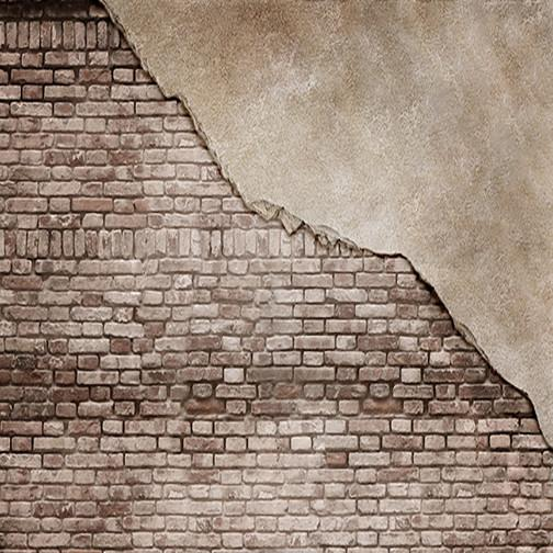 exposed brick and wall backdrop boy grunge