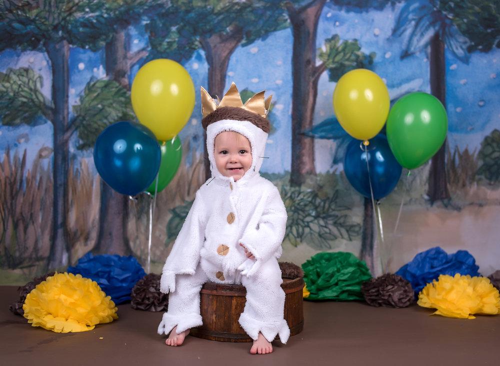 Where the wild things are 1st birthday cake smash costume portrait
