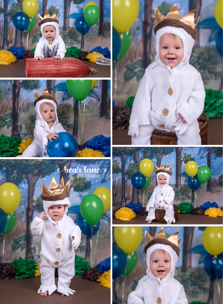 King of all the wild things - where the wild things are costume, cake smash