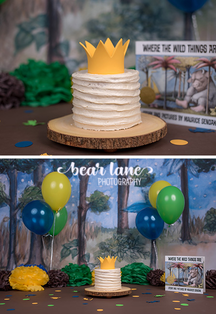 Where The Wild Things Are Cake Smash King Of All The