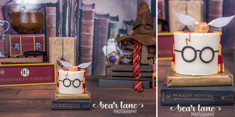 Baby boy first birthday portrait Harry Potter Gryffindor robe Wizard Magic Cake Smash Glasses Snitch and Sorting Hat