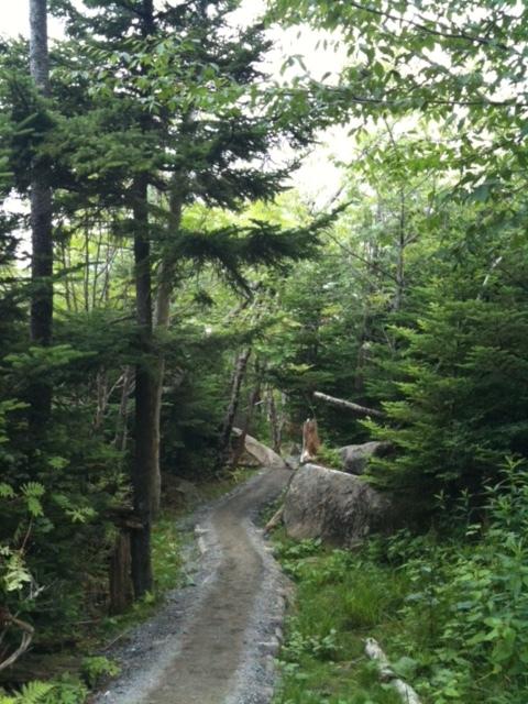 Appalachian Trail Tennessee