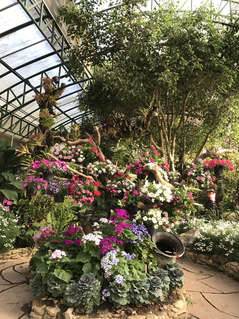 The green house overflows with colorful blooms!