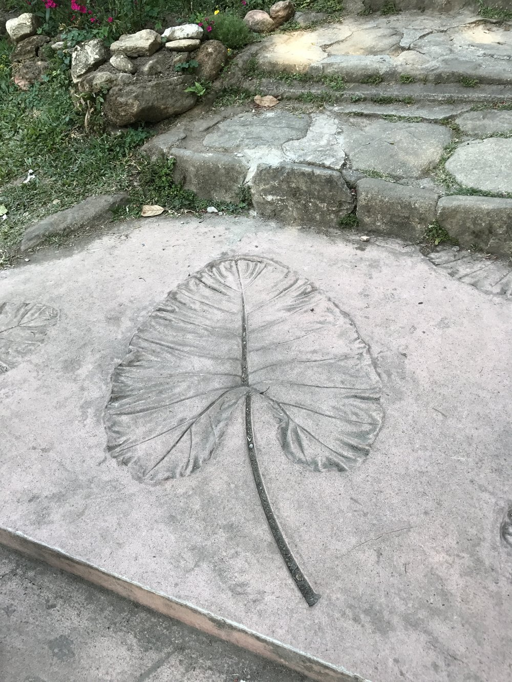 We loved the leaf prints and carvings in the concrete here in the king's garden and other places throughout SE Asia. This is a project we tried after a trip several years ago when I first discovered concrete pavers with leaf prints. We made several, and they were beautiful, and they broke! All of them! These look sturdy enough to withstand time and traffic!