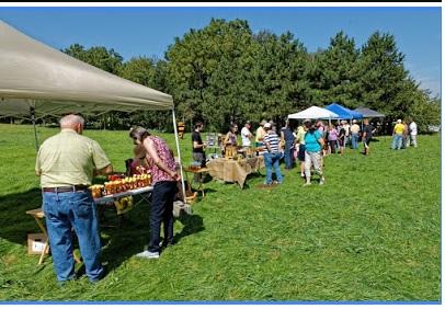 Bee Market 1.jpg