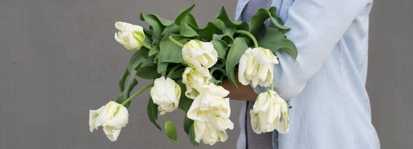 Apr_tulip_FBcover.png