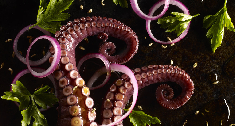 Sue Atkinson-new crop Octopus salad with fennel 30179.jpg