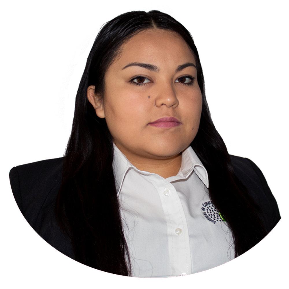 Lizeth Osorio  Auditor Operativo  Extensión: 2008  Correo: orozco@audico.com.mx