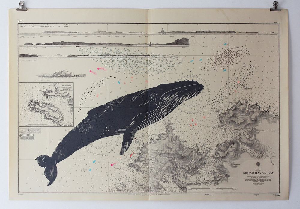 Whale prints - I make my whale prints in small batches, and sell them in online private views. You can sign up to my newsletter below to recieve a heads up on the next private view. My first whale print was featured in The Guardian.