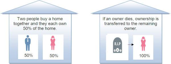Property Cohort - Joint Tenants 1.jpeg