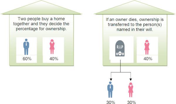 Property Cohort - Tenants In Common.jpeg