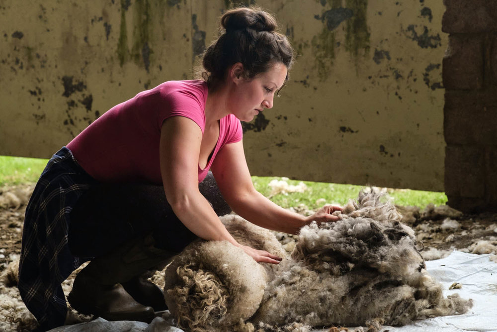 Sarah The Wool Gatherer.jpg