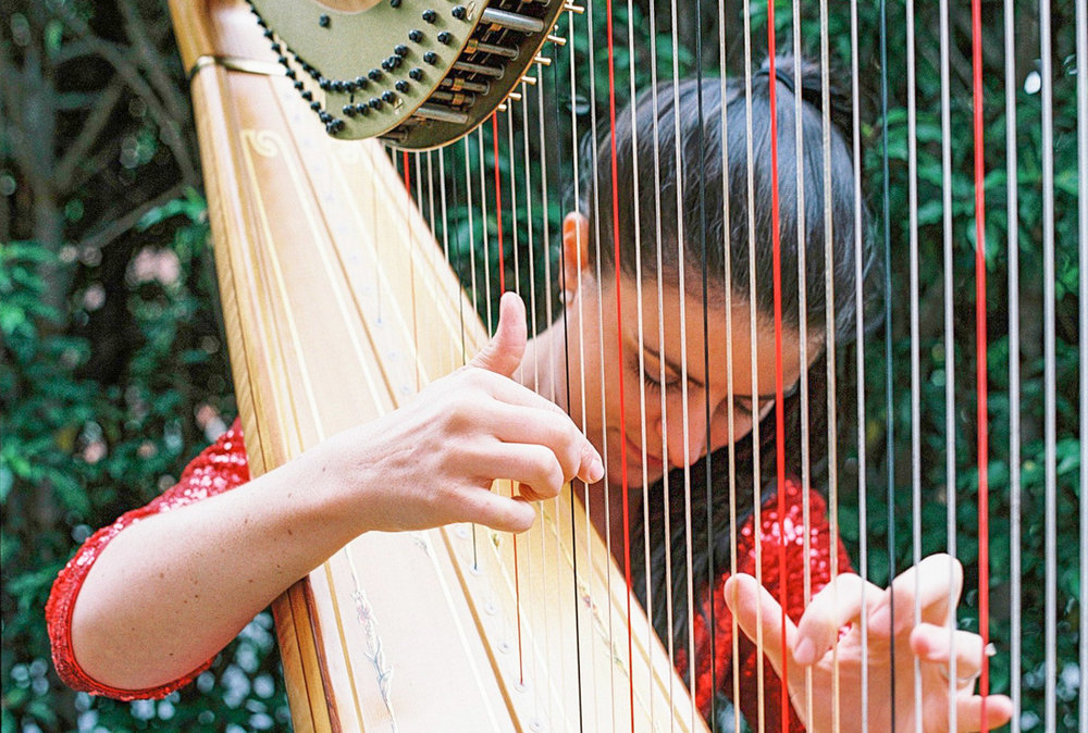 Rebecca The Harpist (from the series Working Hands)
