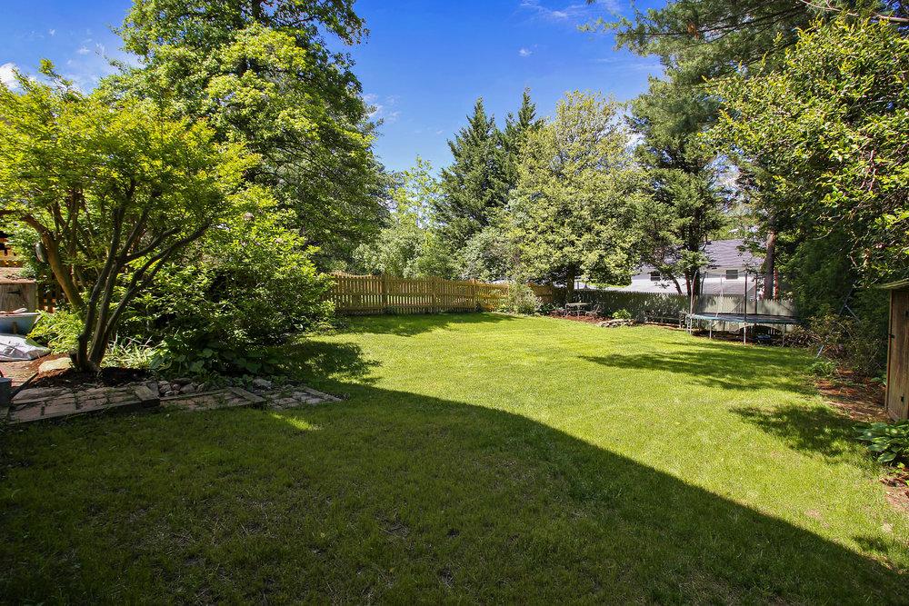 Exterior-Back Yard-IMG_4649.JPG