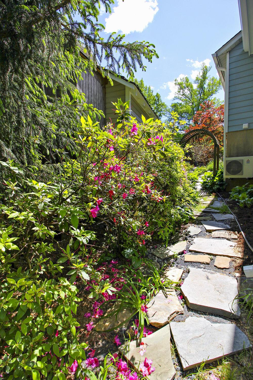 Exterior-Side Yard-IMG_4661.JPG