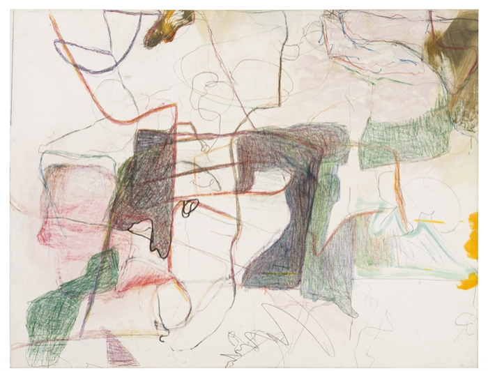 Cora Cohen, Lateral Meanders, 2016, colored pencil, marker, oil, graphite on linen