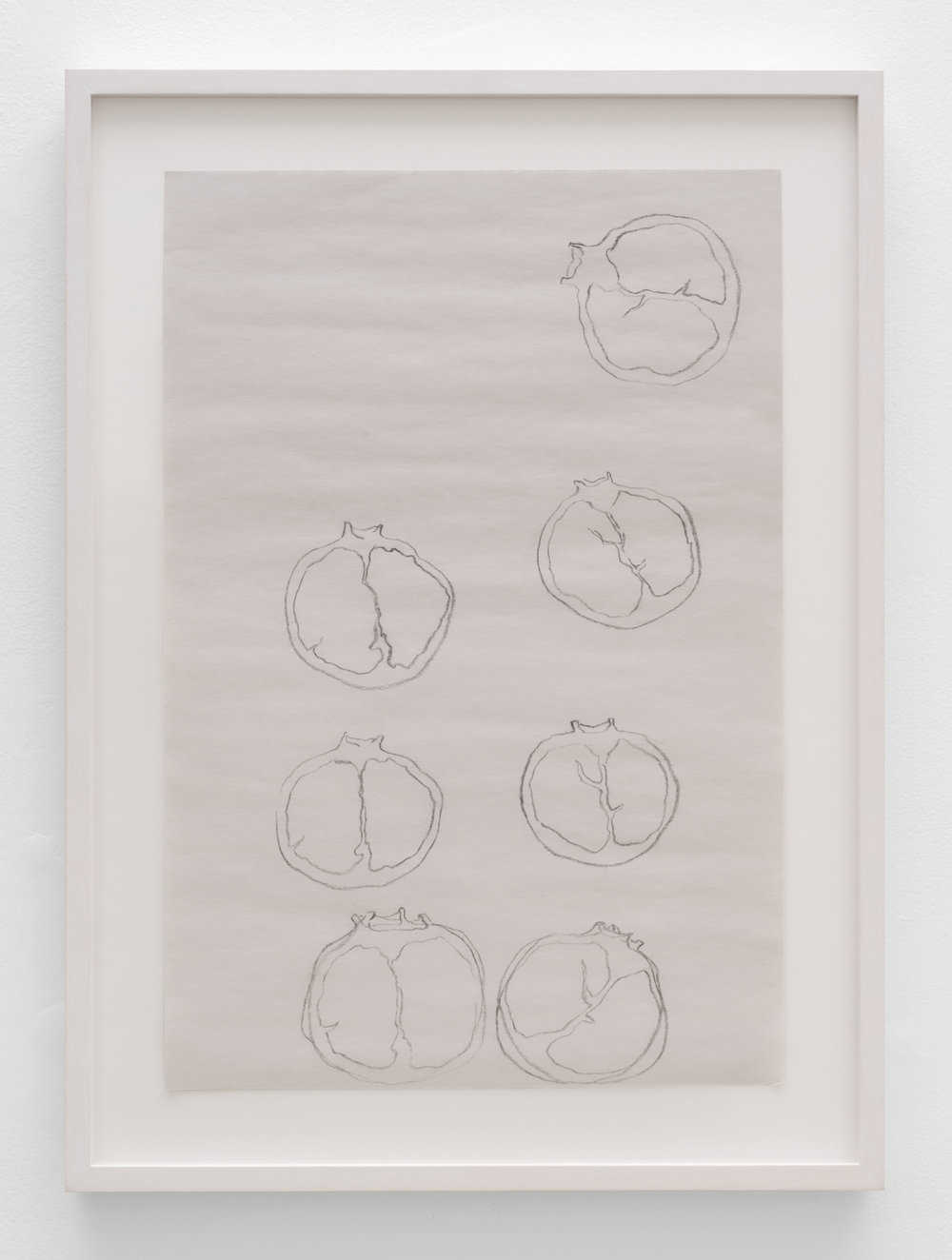 Eli Farahmand, Pomegranete, 2017, graphite on newsprint
