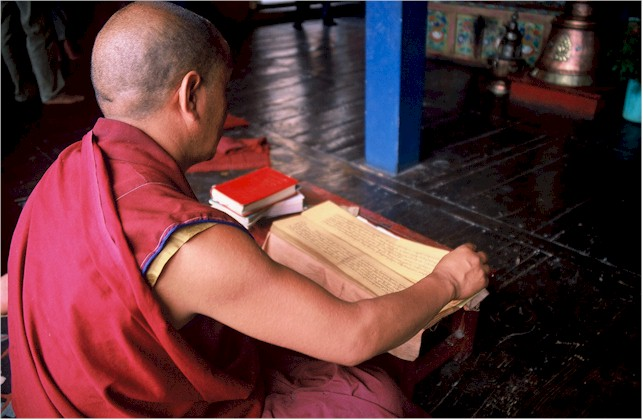 Monk_reading_night