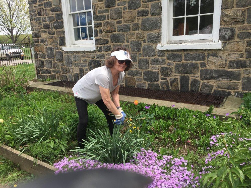 2018-05-05 NSCDNY Van Courtlandt Spring Cleanup  (6).JPG