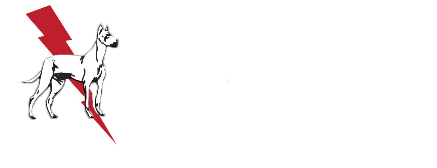Dane Electric