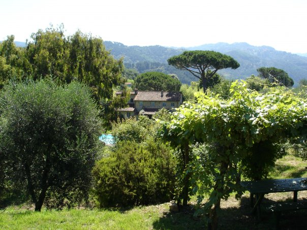 Our entire property is fenced and gated. This view from the top of our land shows the hills of the Apuane Alps which surround the house.