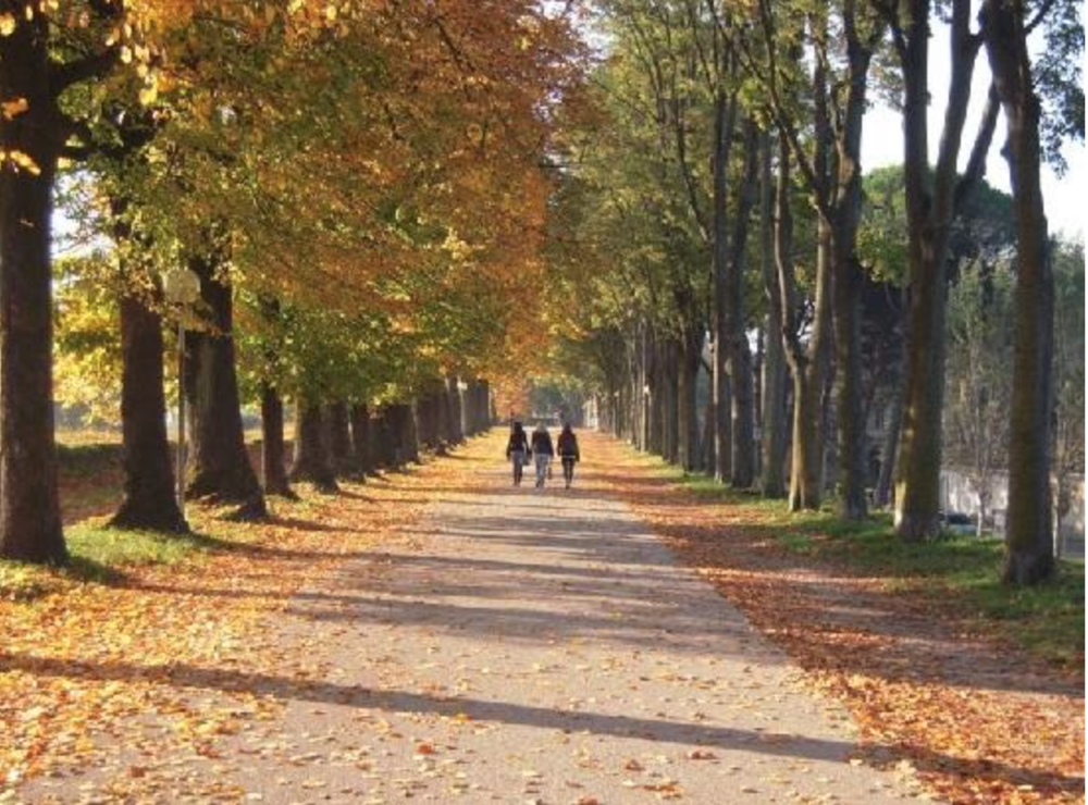 The promenade on top of Lucca's walls, approximately 2.5 miles around, is a beautiful walk in any season, offering amazing views of the city and surrounding mountains.