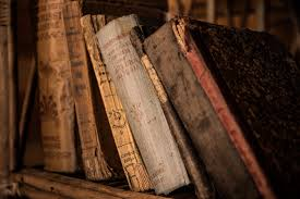 library 3.jpeg