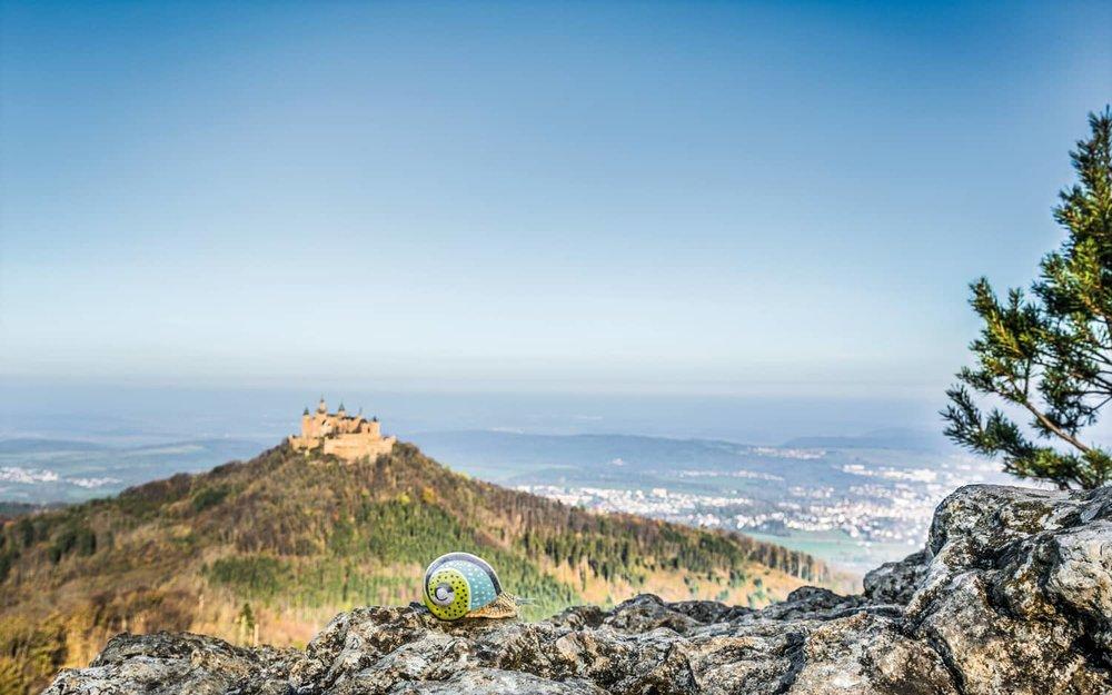 Hohenzollern-Burg-Panorama-Weinbergschnecke-Louis.jpg