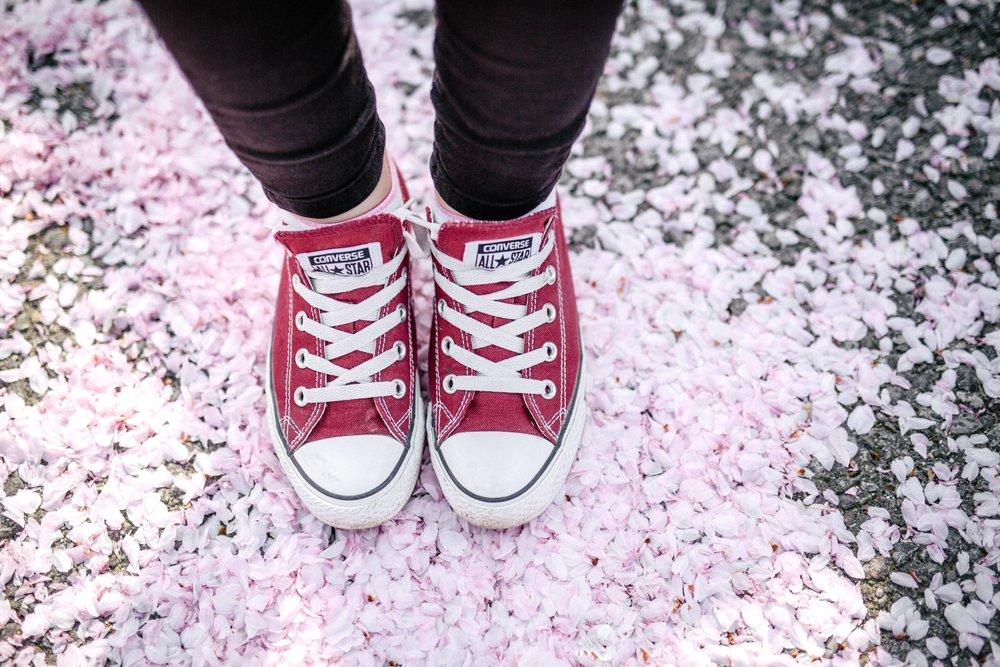 Frühling-13.jpg