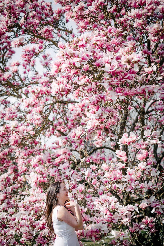 Frühling-33.jpg