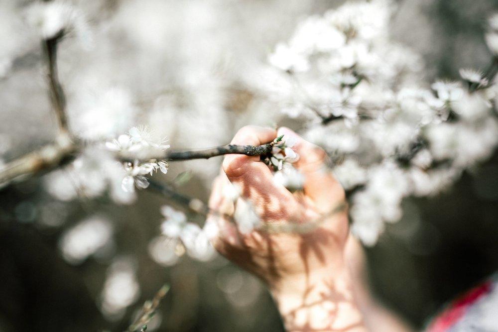Frühling-44.jpg