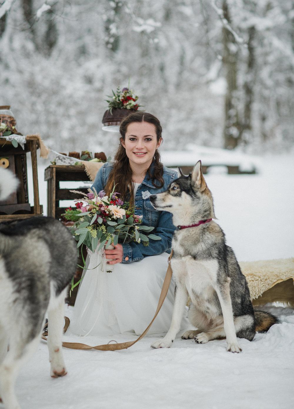 yessica-baur-fotografie-styleshooting-huskies-4150.JPG