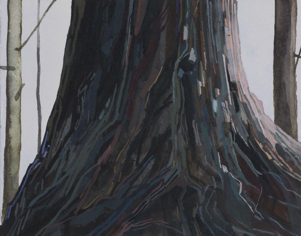 Tree, 2014