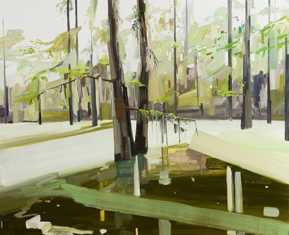Swamp, 2010, Oil on canvas, 78 x 96""