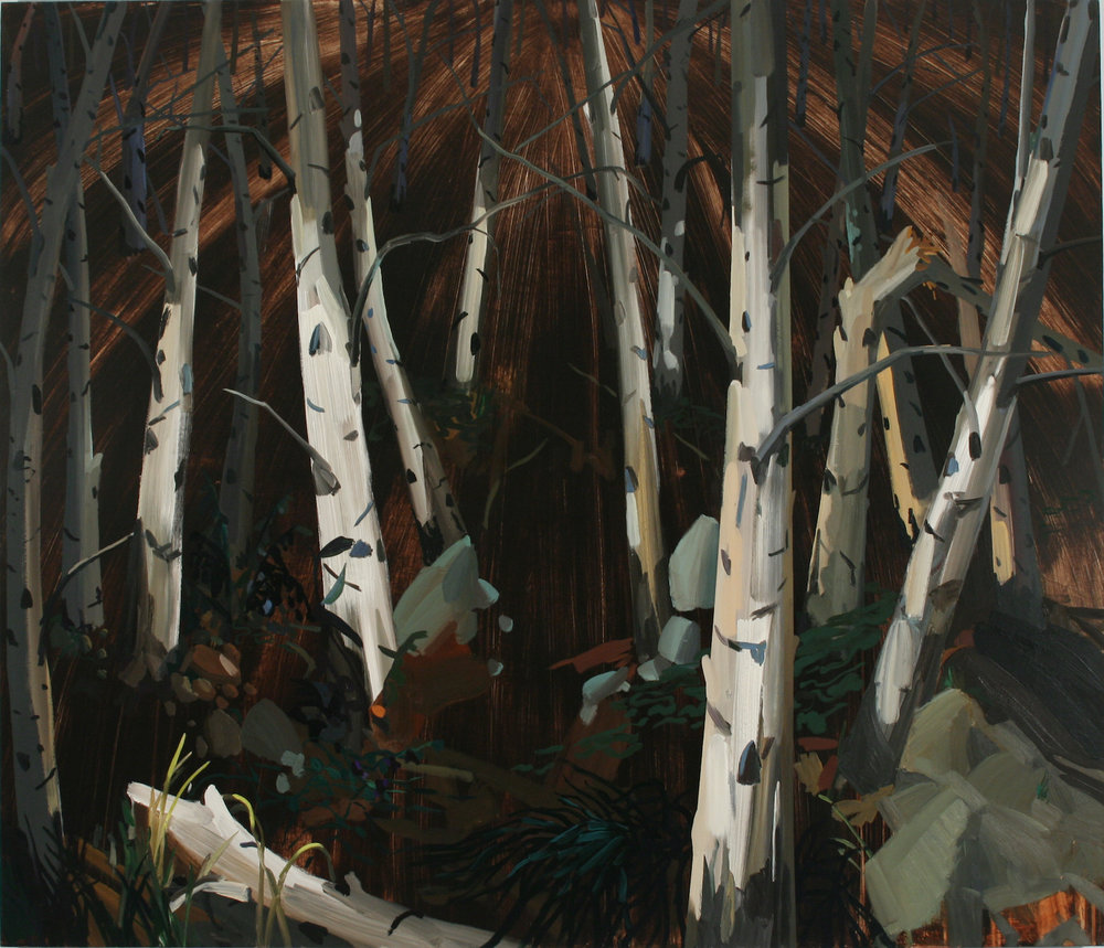 Birch Trees , 2005, Oil on canvas, 72 x 84""