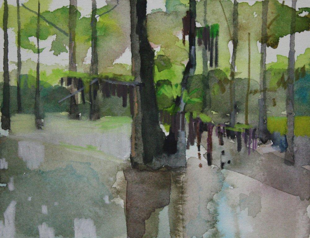 Swamp, 2009