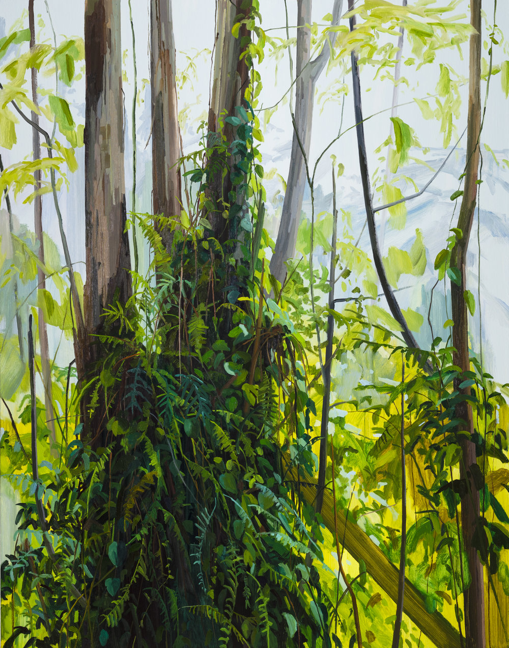 Trees and Ferns, 2019, Oil on canvas, 84x66""