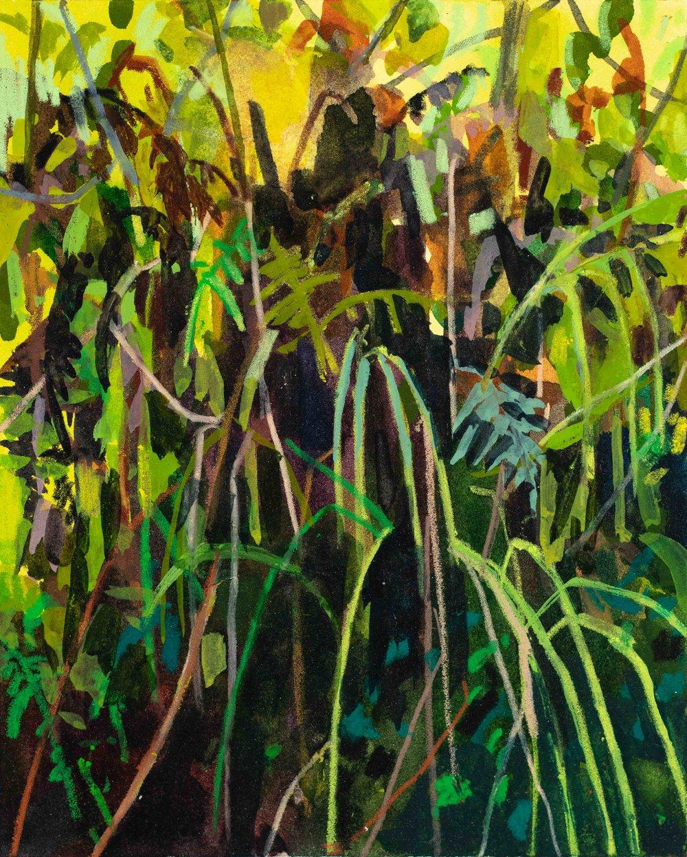 Grass and Ferns, 2019