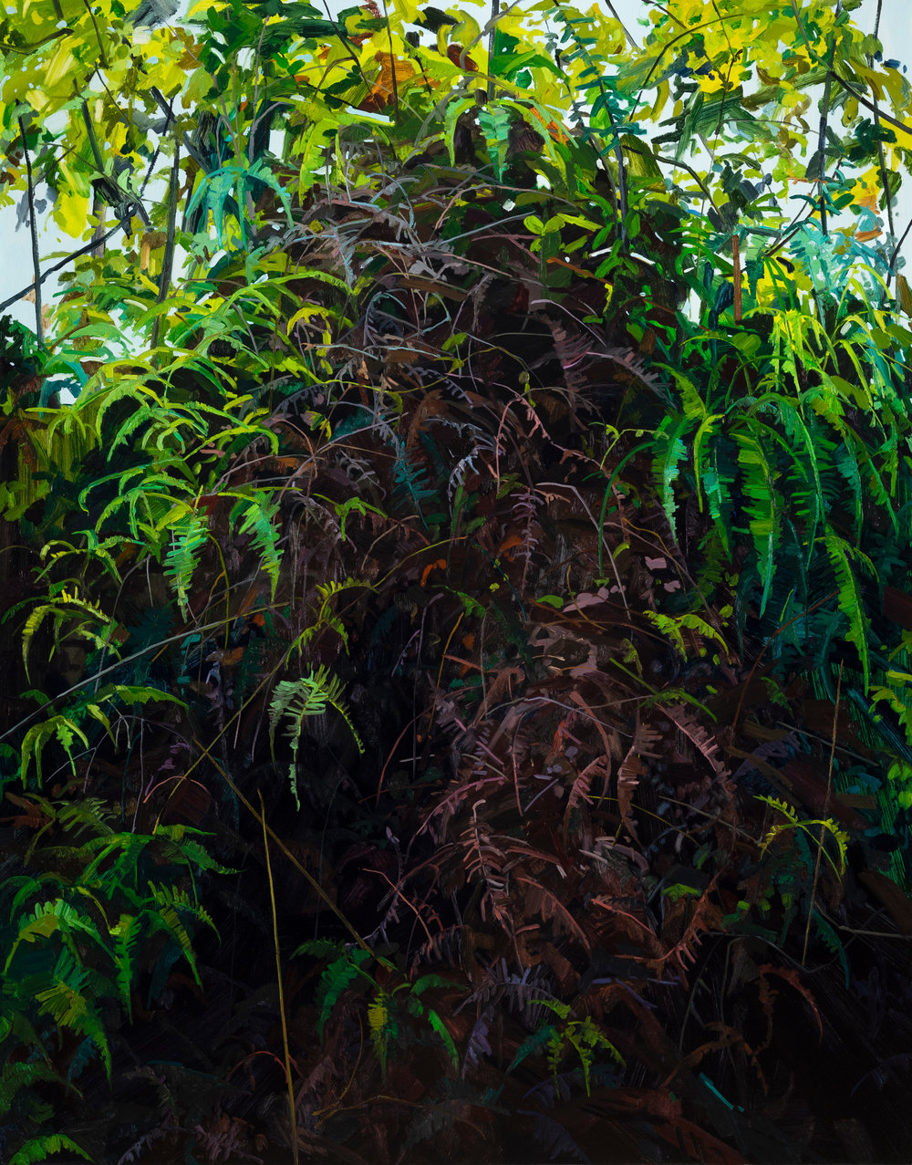 Ferns and Vines, 2019, Oil on canvas, 84x66""