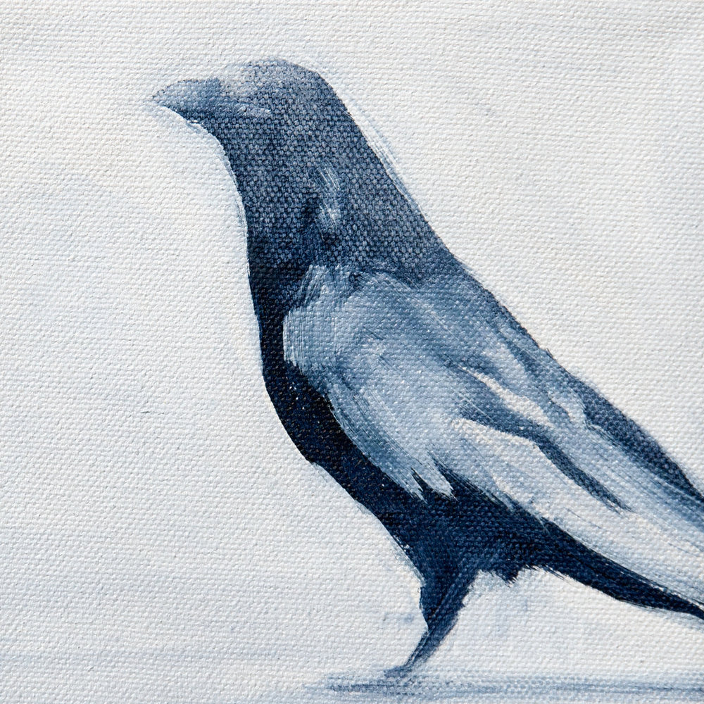 Crow Standing
