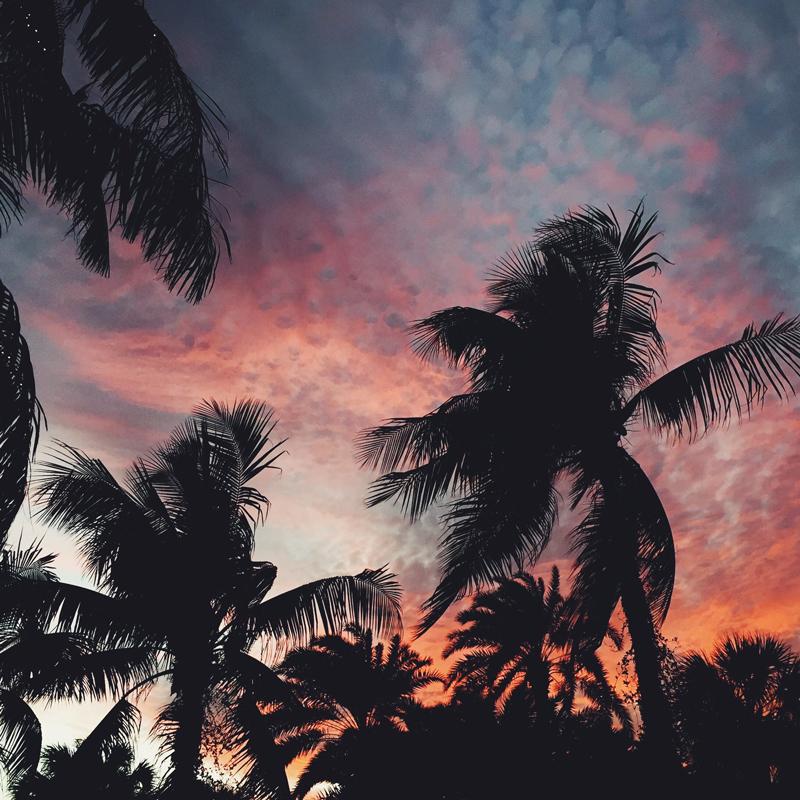 Miami001.jpg