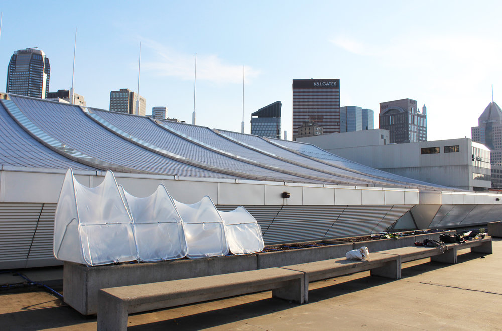 A final look at our hoop house after installation. The roof of the convention center offered spectacular views of the city!