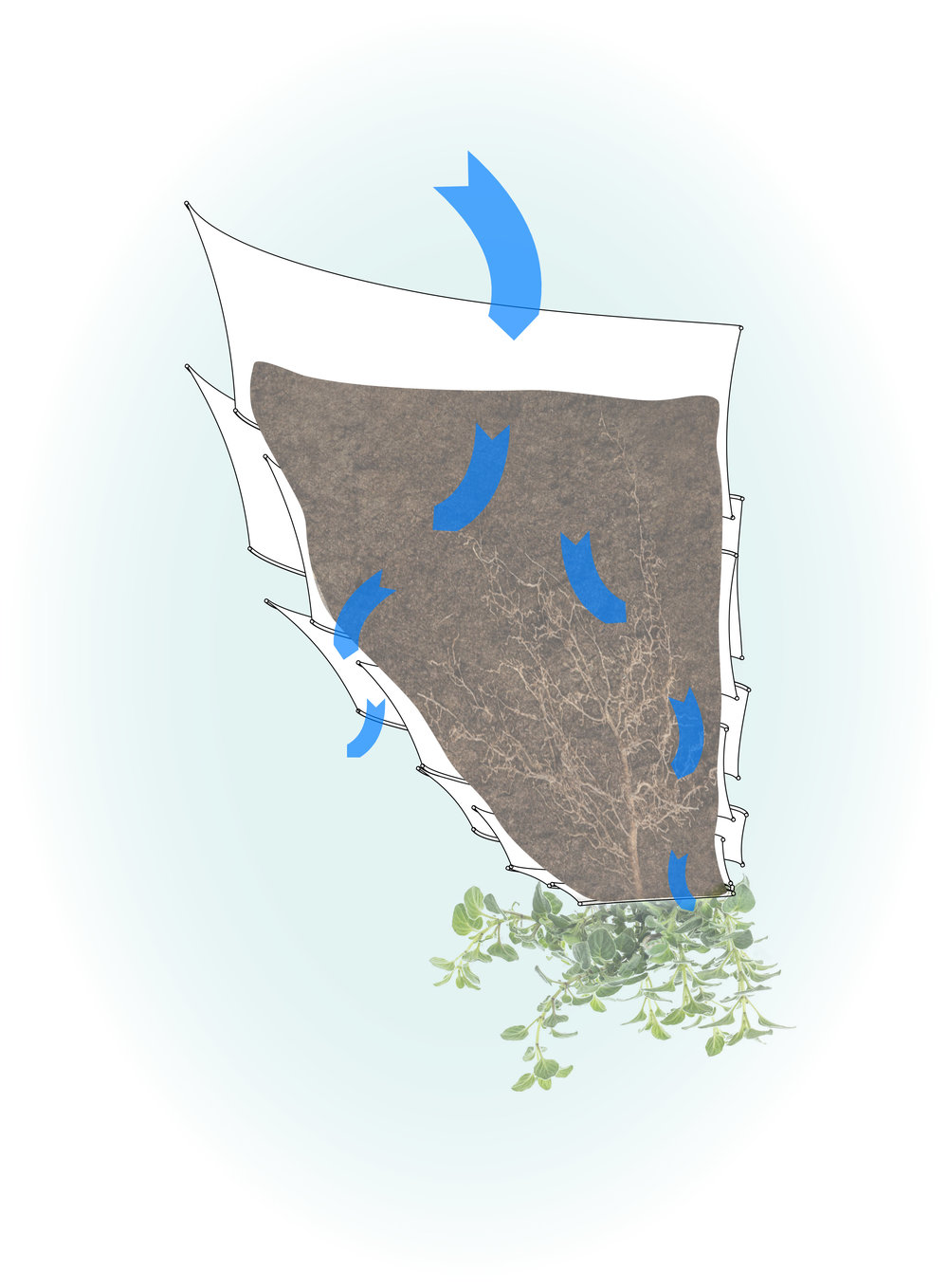 This diagram shows the two main paths that the water can drain out of the planter- between the two layers of plastic and out the bottom hole