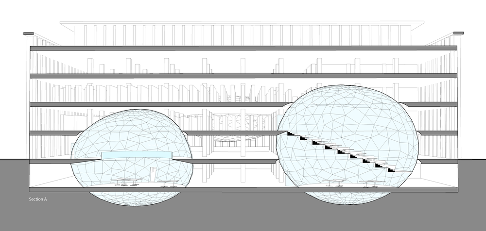 The floors inside the orbs line up with the existing floors for easy access. The floors the don't go through the glass, taper to meet it, in order to minimize the amount of glass that the floor would cover.