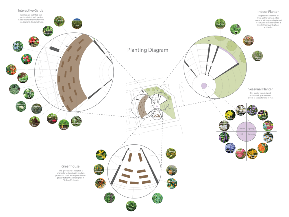 This diagram shows the types of plants that will be placed in each planting area.