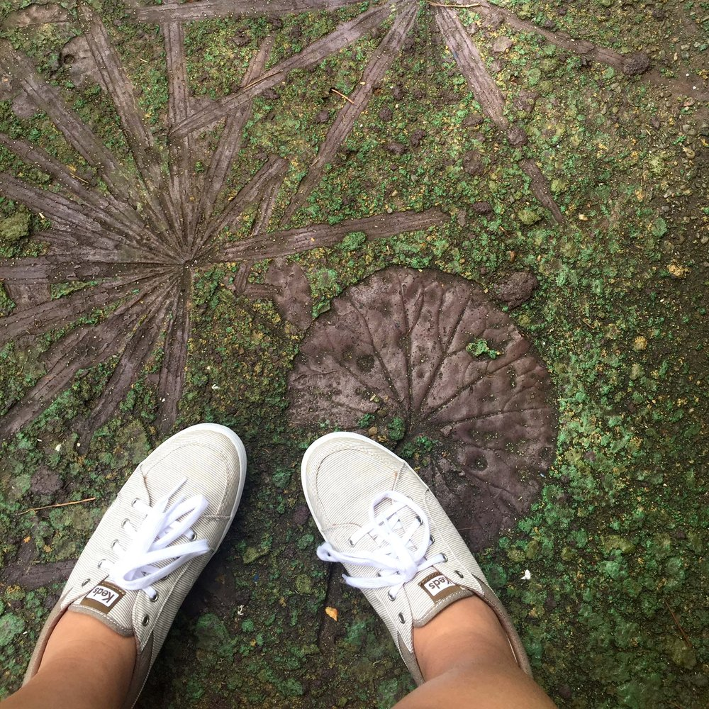 On this path, you can see some of the giant leaf shapes that have been pressed into the ground.