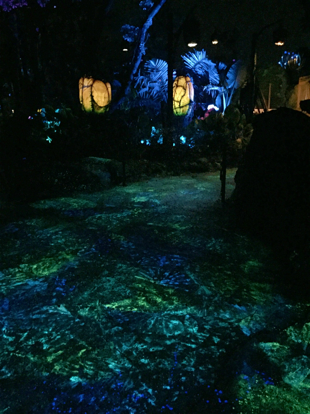 This photo shows the backlighting that is used to light up the Pandora park at night. It honestly doesn't do it justice, though. You'll just have to see it in person to get the whole affect!