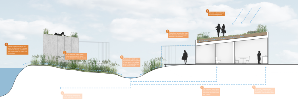 This annotated section shows how water is collected on site and the different paths that it can take to get to the main bioswale for storage before being filtered and used by the occupants.