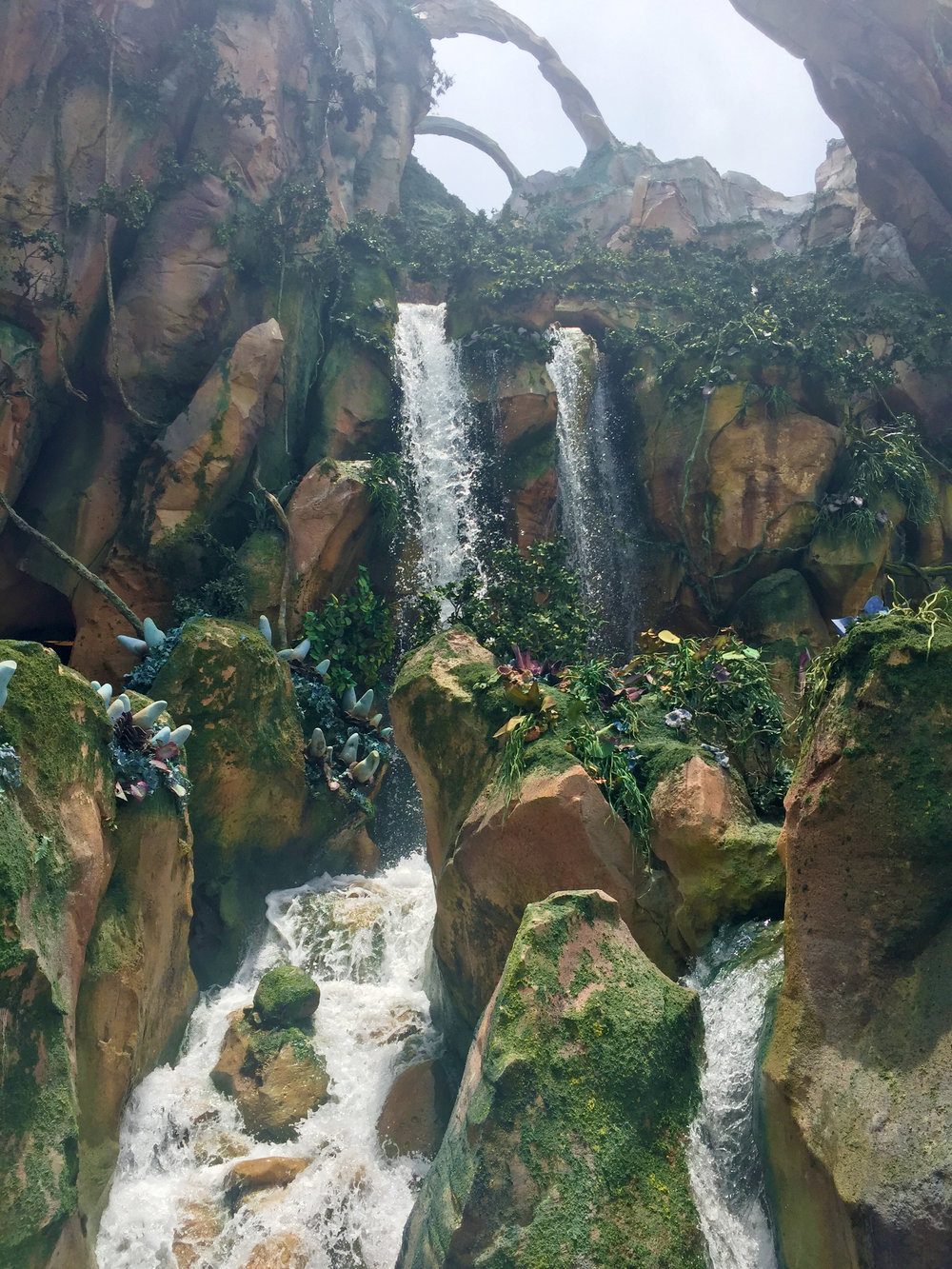 Even if you fastpass Flight of Passage, you'll still get to see the majority of the amazing queue decorations, like this gorgeous waterfall!